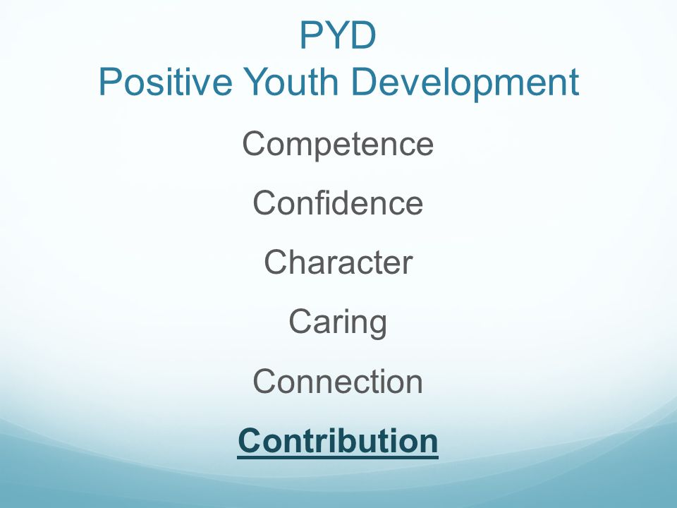 PYD Positive Youth Development Competence Confidence Character Caring Connection Contribution