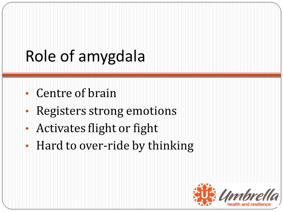 Role of amygdala Centre of brain Registers strong emotions Activates flight or fight Hard to over-ride by thinking