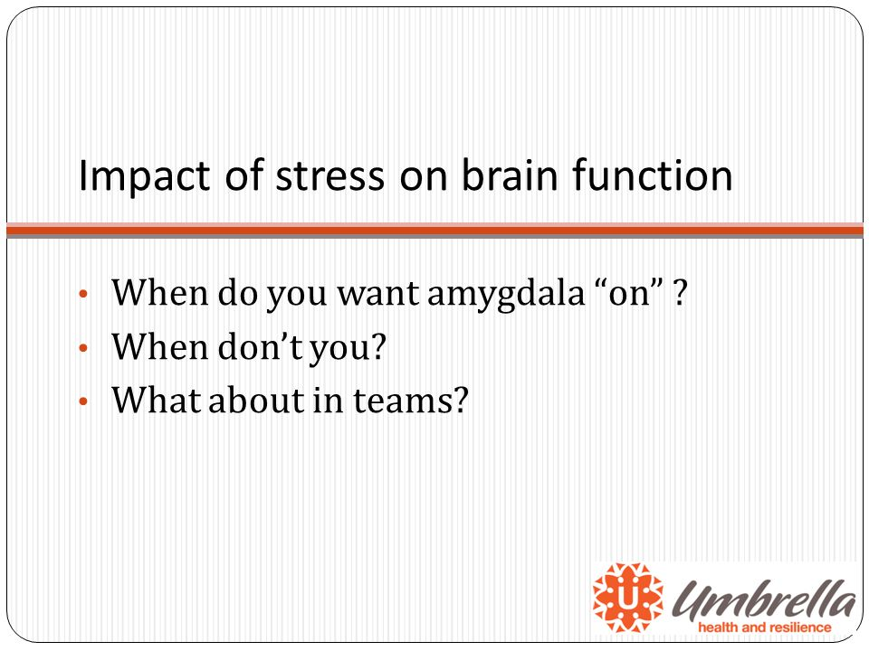 Impact of stress on brain function When do you want amygdala on .