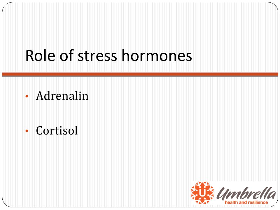Role of stress hormones Adrenalin Cortisol
