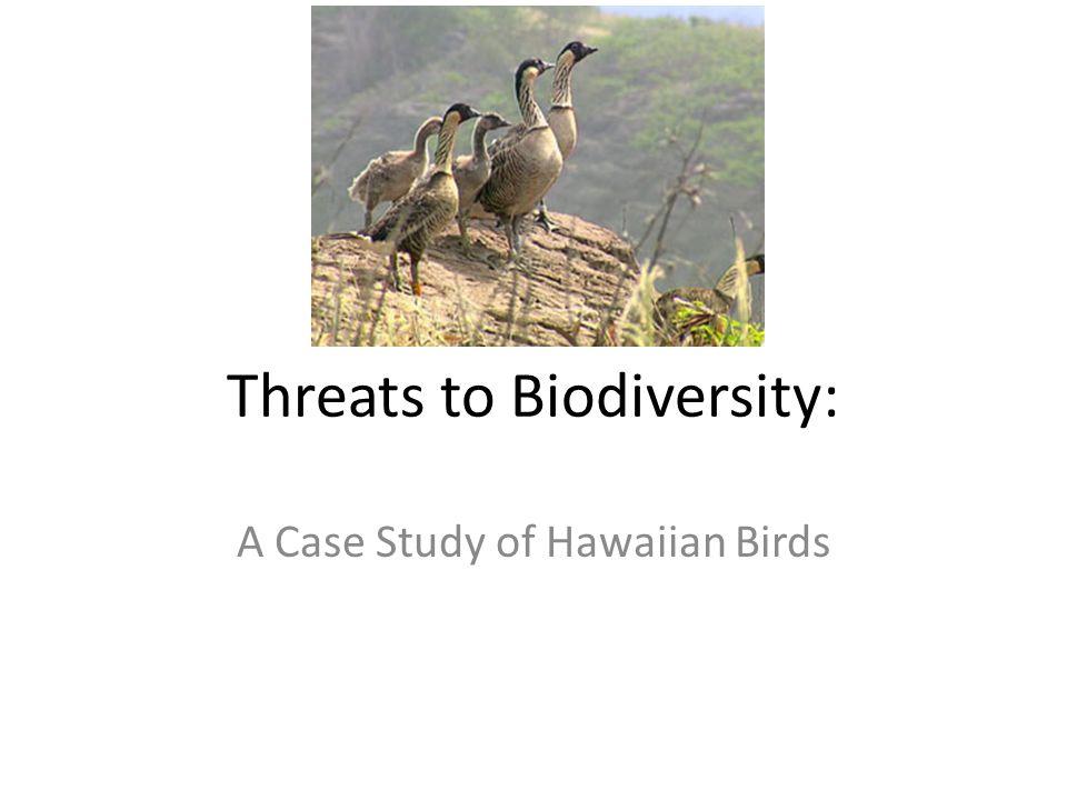 Threats to Biodiversity: A Case Study of Hawaiian Birds