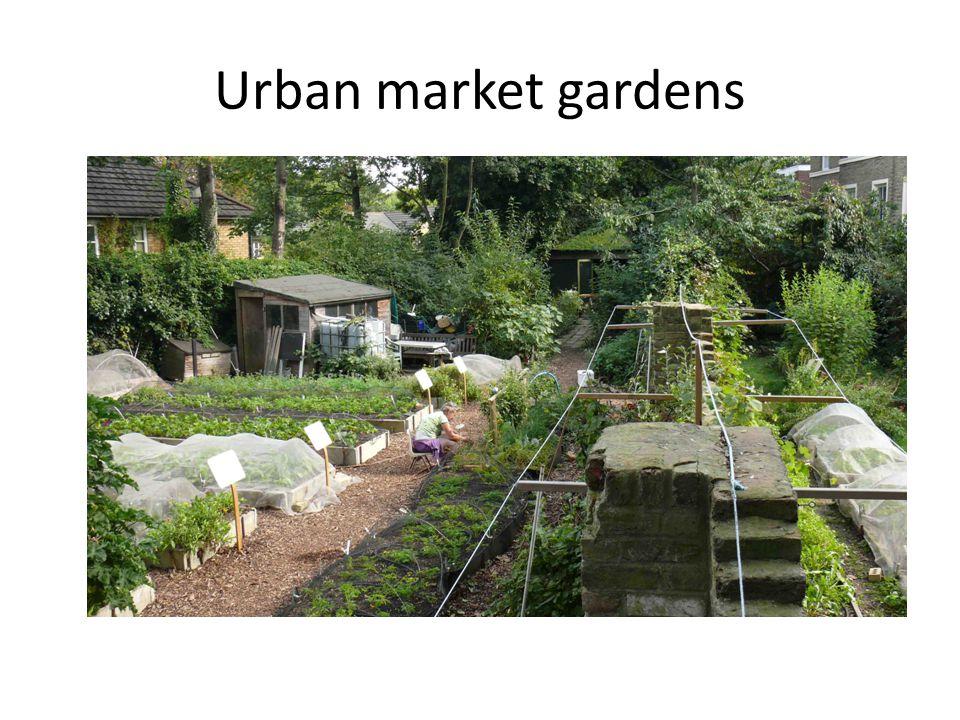 Urban market gardens