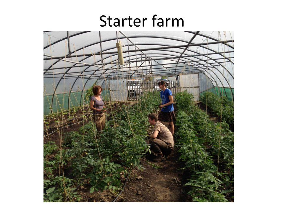 Starter farm