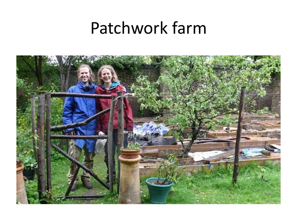 Financial self-sufficiency £700,000 turnover, 24 part-time staff, 29 farmers, 3500 people