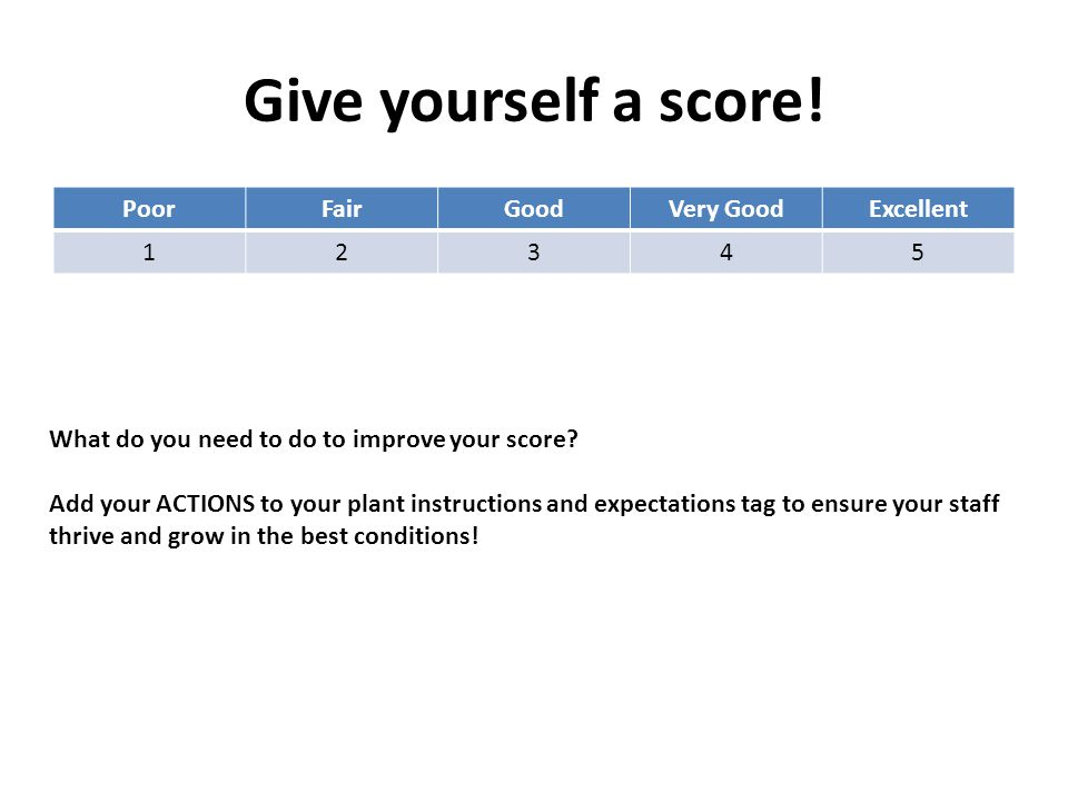 Give yourself a score! PoorFairGoodVery GoodExcellent 12345 What do you need to do to improve your score? Add your ACTIONS to your plant instructions
