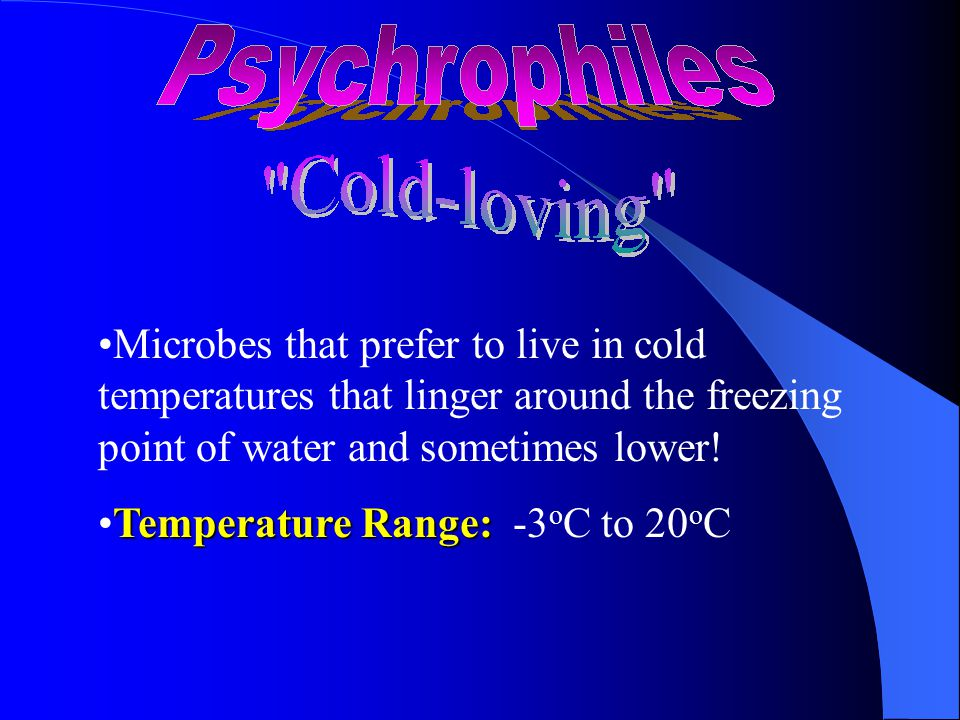 Microbes that prefer to live in cold temperatures that linger around the freezing point of water and sometimes lower.