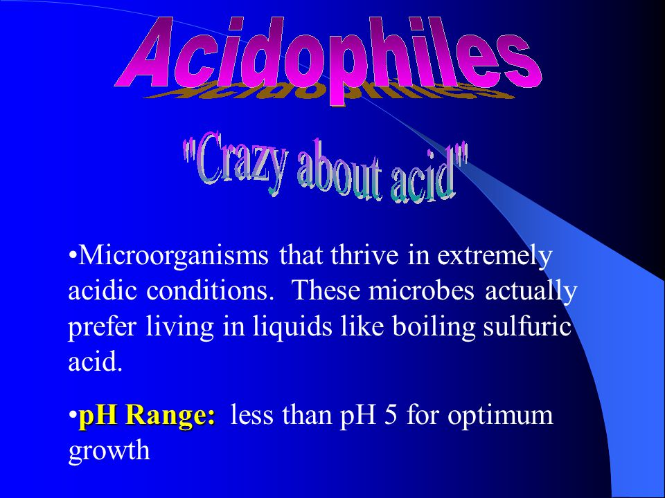 Microorganisms that thrive in extremely acidic conditions.