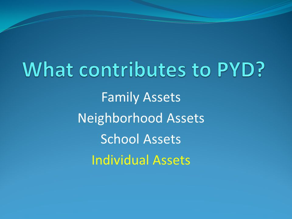 Family Assets Neighborhood Assets School Assets Individual Assets
