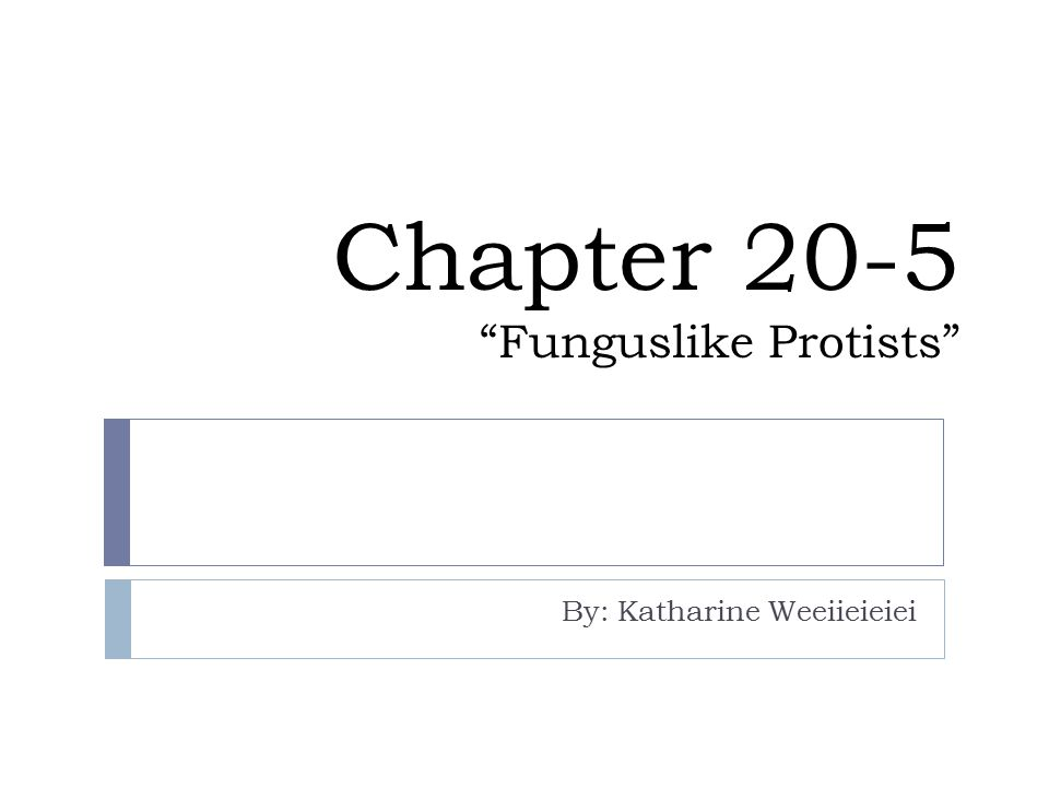 Chapter 20-5 Funguslike Protists By: Katharine Weeiieieiei