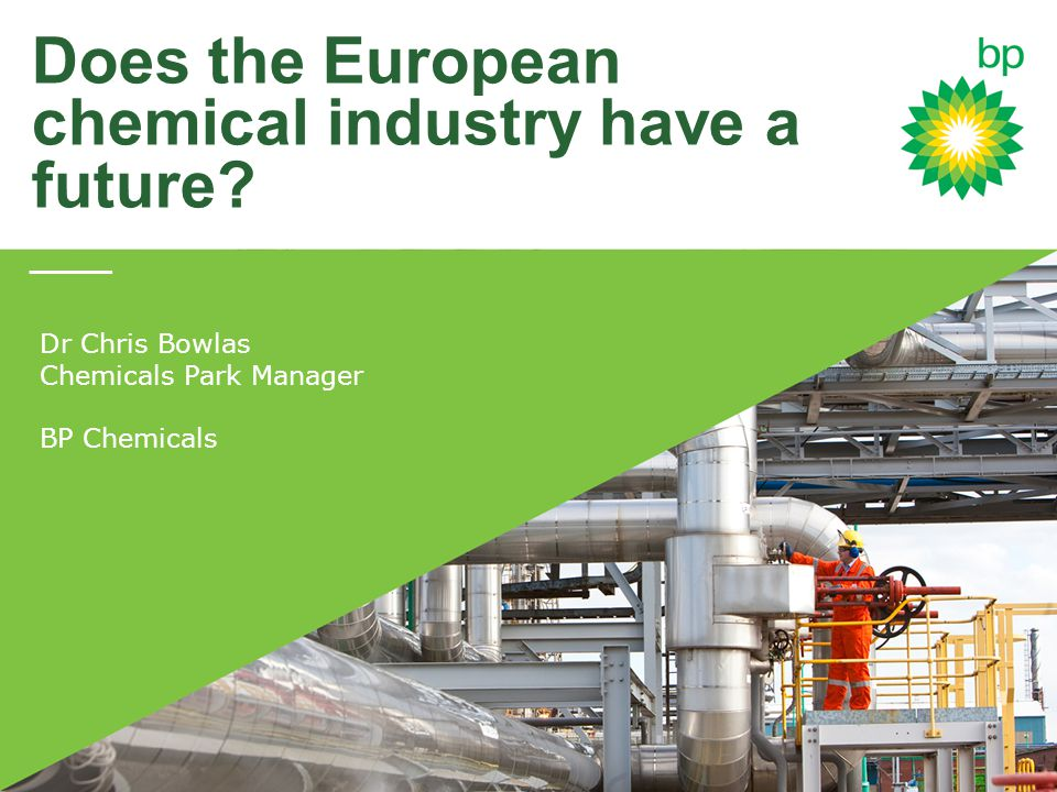 Does the European chemical industry have a future.
