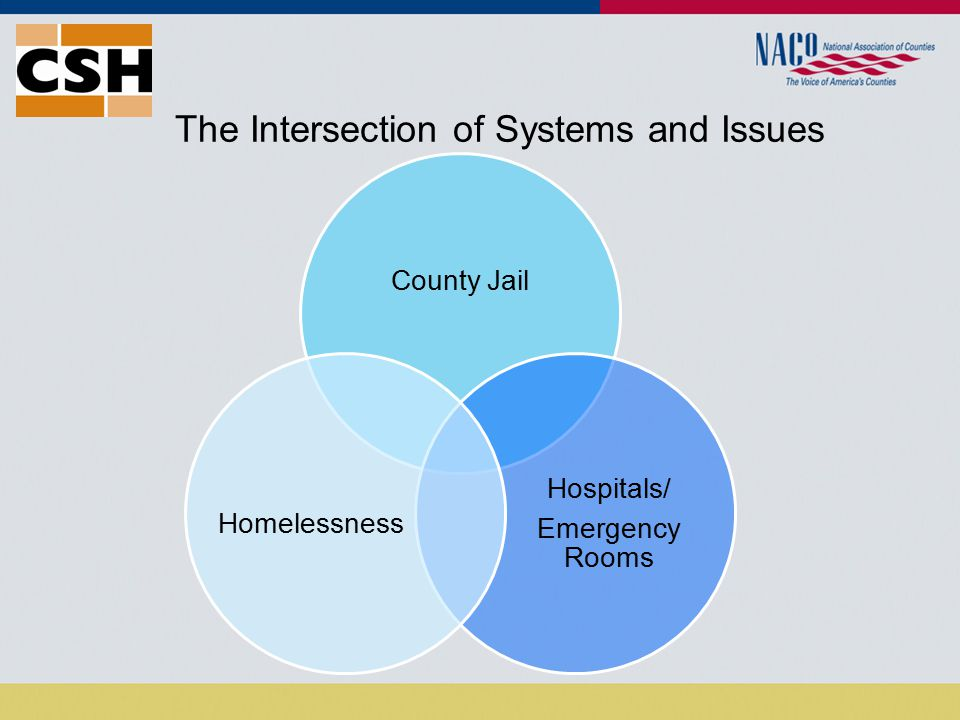 The Intersection of Systems and Issues County Jail Hospitals/ Emergency Rooms Homelessness