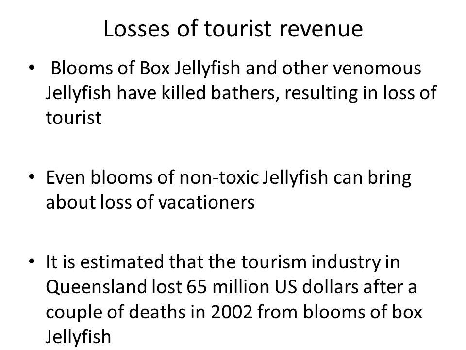 Losses of tourist revenue Blooms of Box Jellyfish and other venomous Jellyfish have killed bathers, resulting in loss of tourist Even blooms of non-toxic Jellyfish can bring about loss of vacationers It is estimated that the tourism industry in Queensland lost 65 million US dollars after a couple of deaths in 2002 from blooms of box Jellyfish