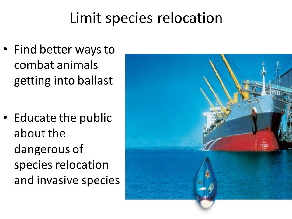 Limit species relocation Find better ways to combat animals getting into ballast Educate the public about the dangerous of species relocation and invasive species