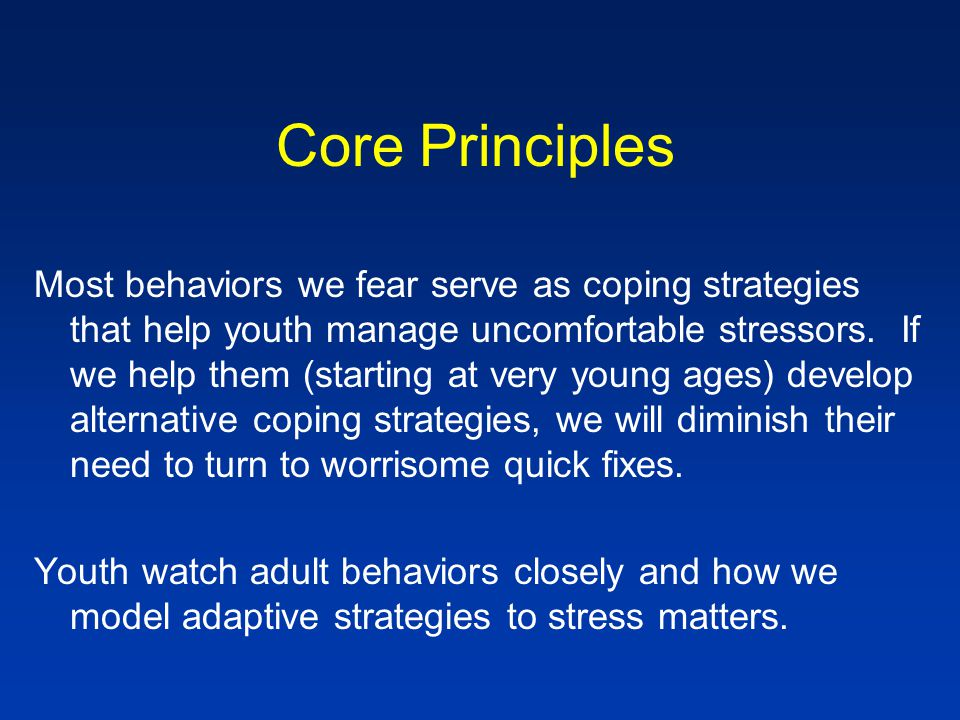 Core Principles Most behaviors we fear serve as coping strategies that help youth manage uncomfortable stressors.