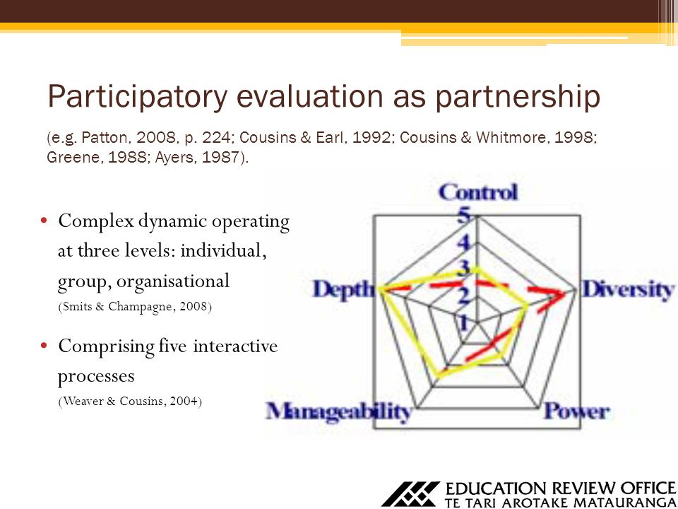 Participatory evaluation as partnership (e.g. Patton, 2008, p. 224; Cousins & Earl, 1992; Cousins & Whitmore, 1998; Greene, 1988; Ayers, 1987). Comple
