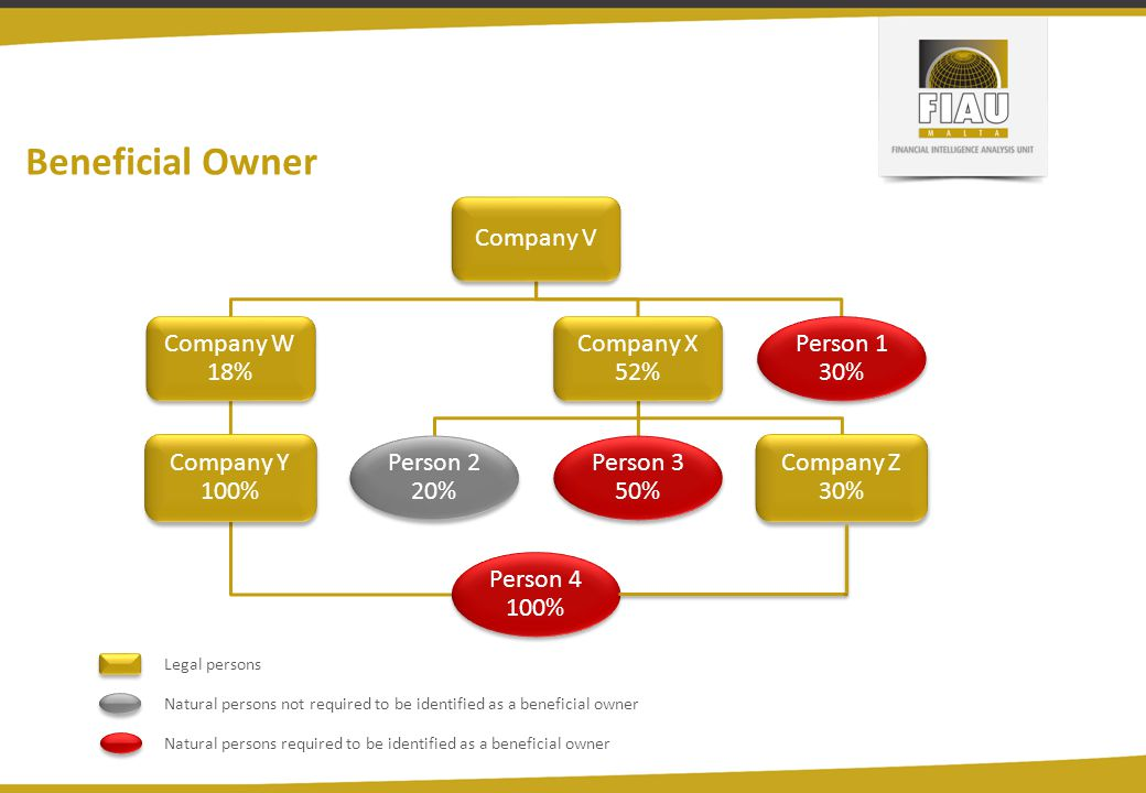 Beneficial Owner Company V Company W 18% Company Y 100% Person 4 100% Company X 52% Person 2 20% Person 3 50% Company Z 30% Person 1 30% Legal persons