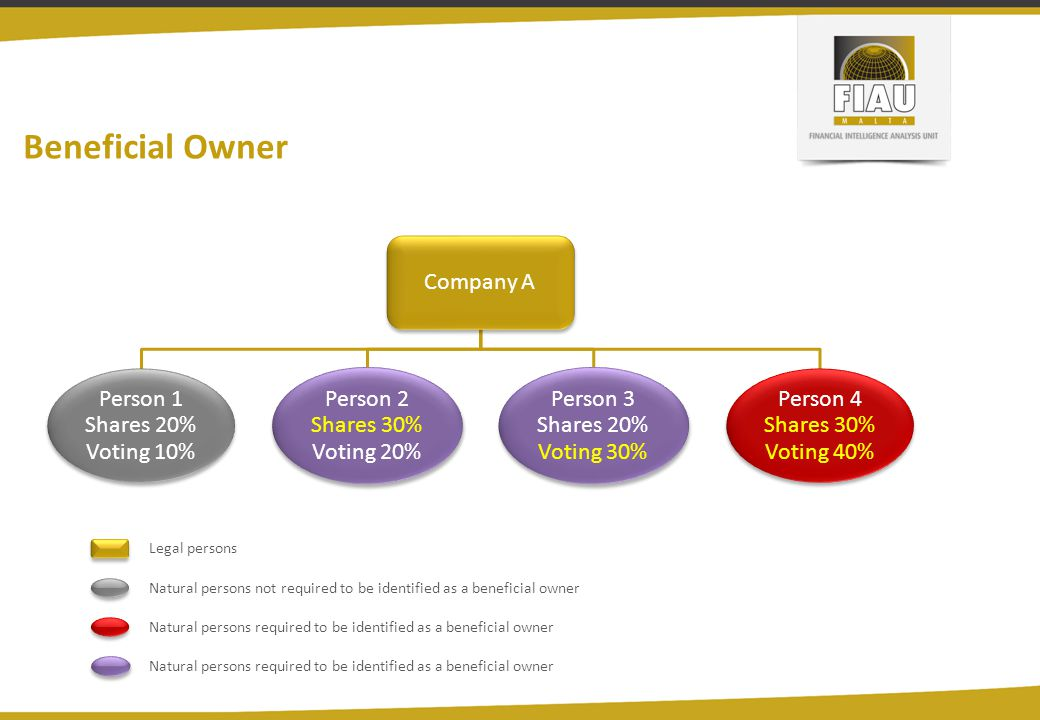 Beneficial Owner Company A Person 1 Shares 20% Voting 10% Person 2 Shares 30% Voting 20% Person 3 Shares 20% Voting 30% Person 4 Shares 30% Voting 40%