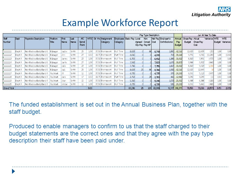 Example Workforce Report The funded establishment is set out in the Annual Business Plan, together with the staff budget. Produced to enable managers