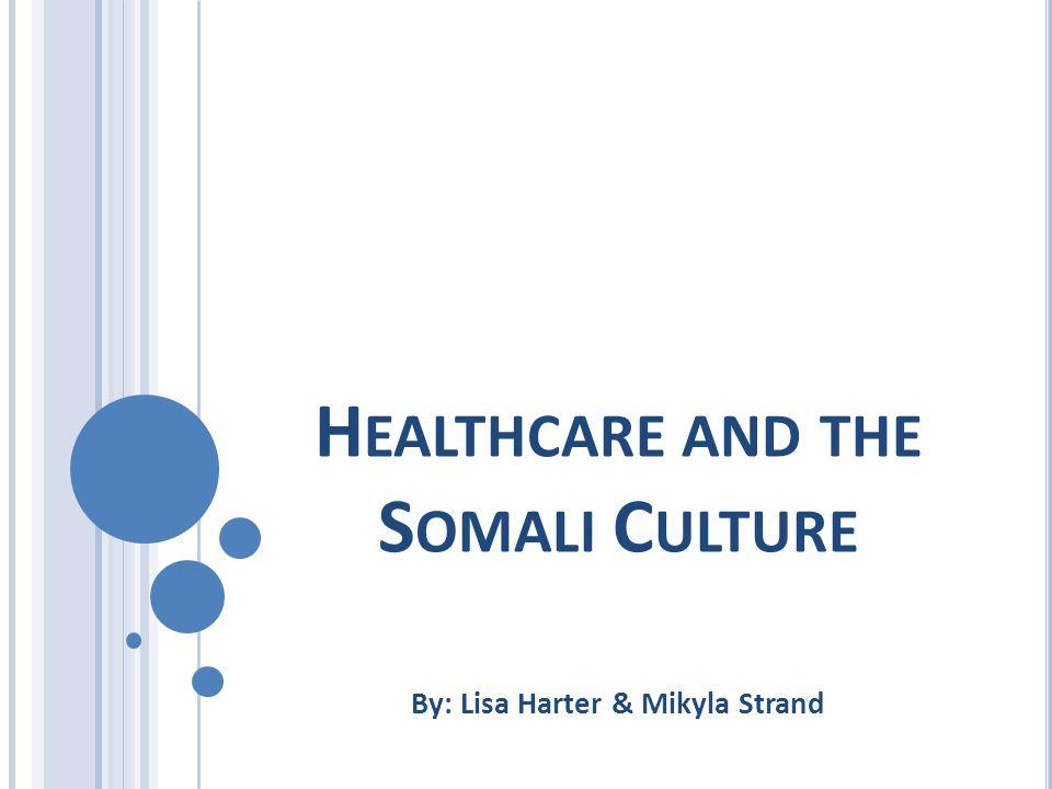 O VERVIEW Background Community Partner Somali Elders Council (SEC) Services Offered Brochure Information Cultural competence Gender sensitivity Tips of culture competent care