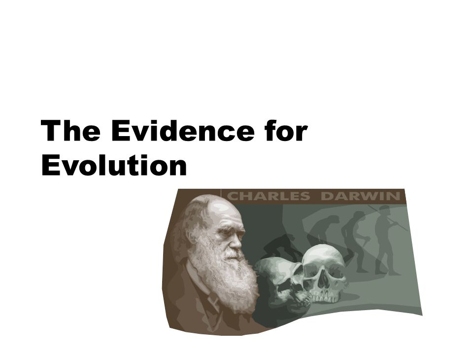 The Evidence for Evolution