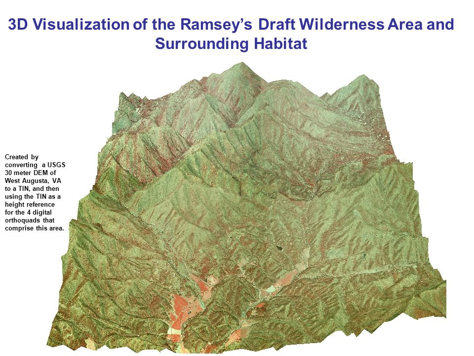 3D Visualization of the Ramsey's Draft Wilderness Area and Surrounding Habitat Created by converting a USGS 30 meter DEM of West Augusta, VA to a TIN, and then using the TIN as a height reference for the 4 digital orthoquads that comprise this area.