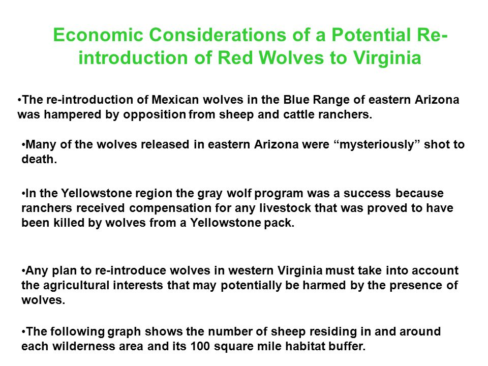 Economic Considerations of a Potential Re- introduction of Red Wolves to Virginia The re-introduction of Mexican wolves in the Blue Range of eastern Arizona was hampered by opposition from sheep and cattle ranchers.