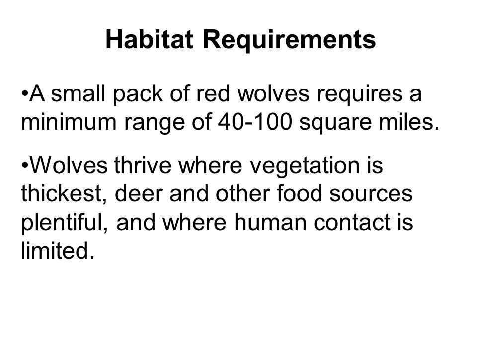 Habitat Requirements A small pack of red wolves requires a minimum range of 40-100 square miles.