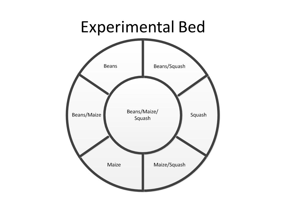 Experimental Bed