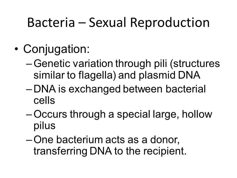 Bacteria – Sexual Reproduction Conjugation: –G–Genetic variation through pili (structures similar to flagella) and plasmid DNA –D–DNA is exchanged between bacterial cells –O–Occurs through a special large, hollow pilus –O–One bacterium acts as a donor, transferring DNA to the recipient.