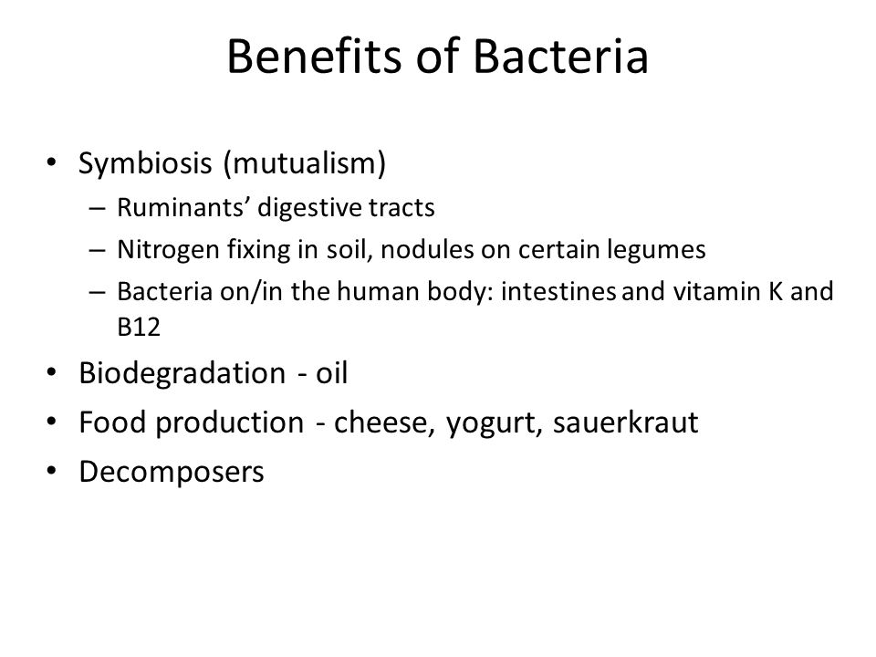 Benefits of Bacteria Symbiosis (mutualism) – Ruminants' digestive tracts – Nitrogen fixing in soil, nodules on certain legumes – Bacteria on/in the human body: intestines and vitamin K and B12 Biodegradation - oil Food production - cheese, yogurt, sauerkraut Decomposers