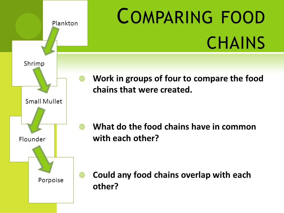 C OMPARING FOOD CHAINS  Work in groups of four to compare the food chains that were created.