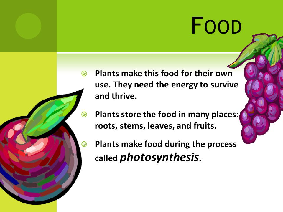 F OOD  Plants make this food for their own use. They need the energy to survive and thrive.