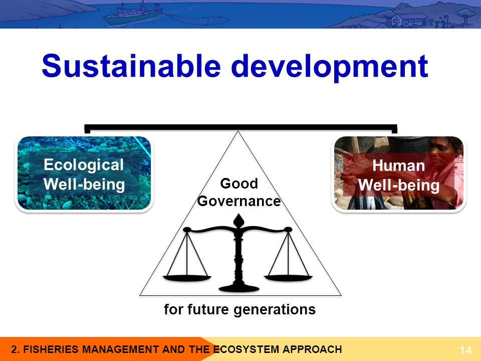 2. FISHERIES MANAGEMENT AND THE ECOSYSTEM APPROACH for future generations Ecological Well-being Human Well-being Good Governance 14 Sustainable develo