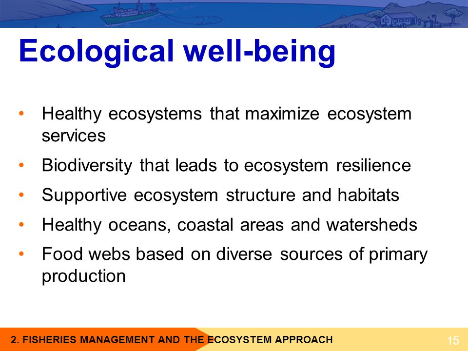 2. FISHERIES MANAGEMENT AND THE ECOSYSTEM APPROACH Ecological well-being Healthy ecosystems that maximize ecosystem services Biodiversity that leads t