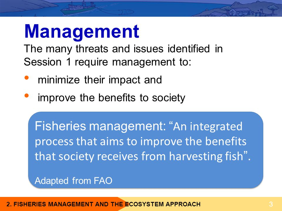 2. FISHERIES MANAGEMENT AND THE ECOSYSTEM APPROACH The many threats and issues identified in Session 1 require management to: minimize their impact an