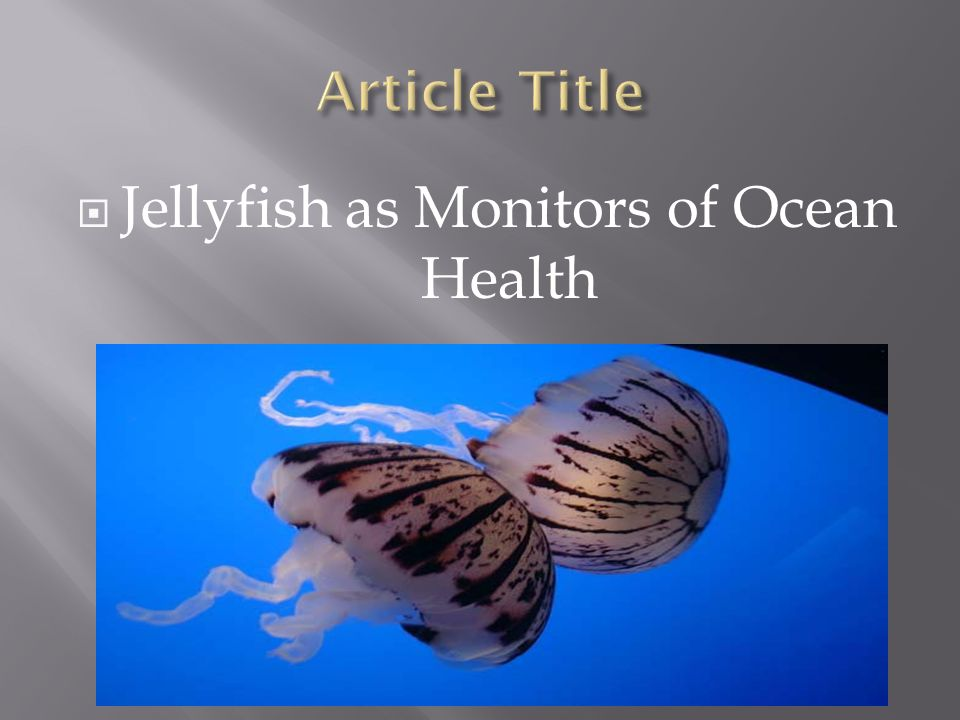  Jellyfish as Monitors of Ocean Health