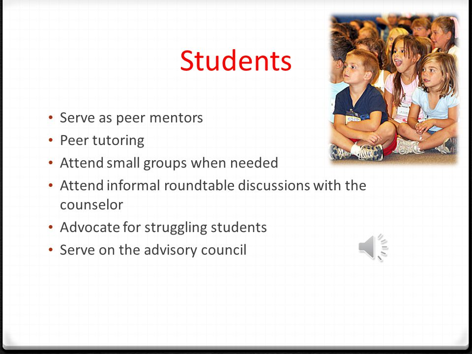 Students Serve as peer mentors Peer tutoring Attend small groups when needed Attend informal roundtable discussions with the counselor Advocate for struggling students Serve on the advisory council