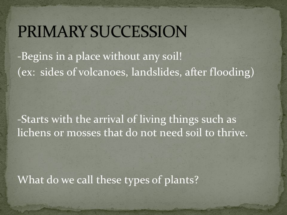 -Begins in a place without any soil! (ex: sides of volcanoes, landslides, after flooding) -Starts with the arrival of living things such as lichens or