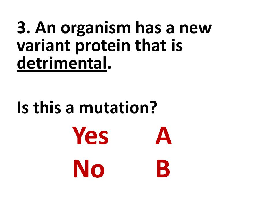 3. An organism has a new variant protein that is detrimental. Is this a mutation YesA NoB