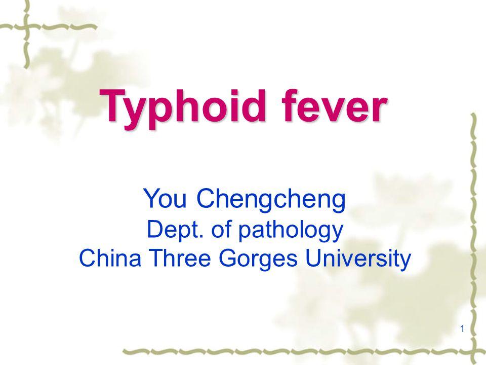 1 Typhoid fever You Chengcheng Dept. of pathology China Three Gorges University