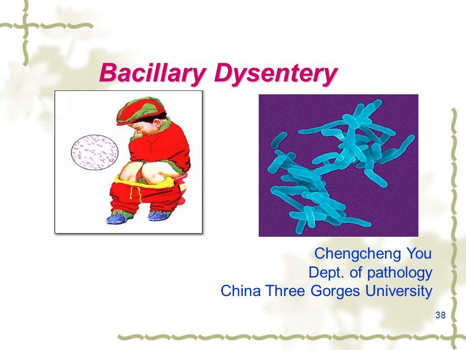 38 Bacillary Dysentery Chengcheng You Dept. of pathology China Three Gorges University