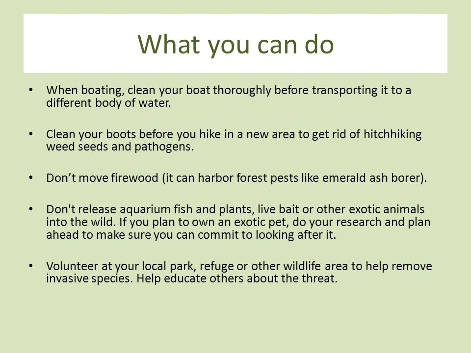 What you can do When boating, clean your boat thoroughly before transporting it to a different body of water. Clean your boots before you hike in a ne