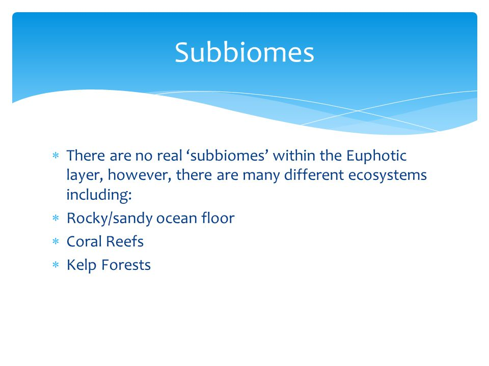  There are no real 'subbiomes' within the Euphotic layer, however, there are many different ecosystems including:  Rocky/sandy ocean floor  Coral R