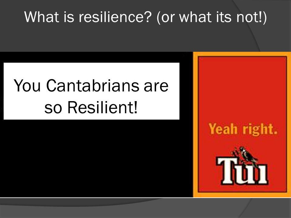 Organisational Resilience What is it that makes some organisations able to not only survive, but also to thrive in the face of adversity.