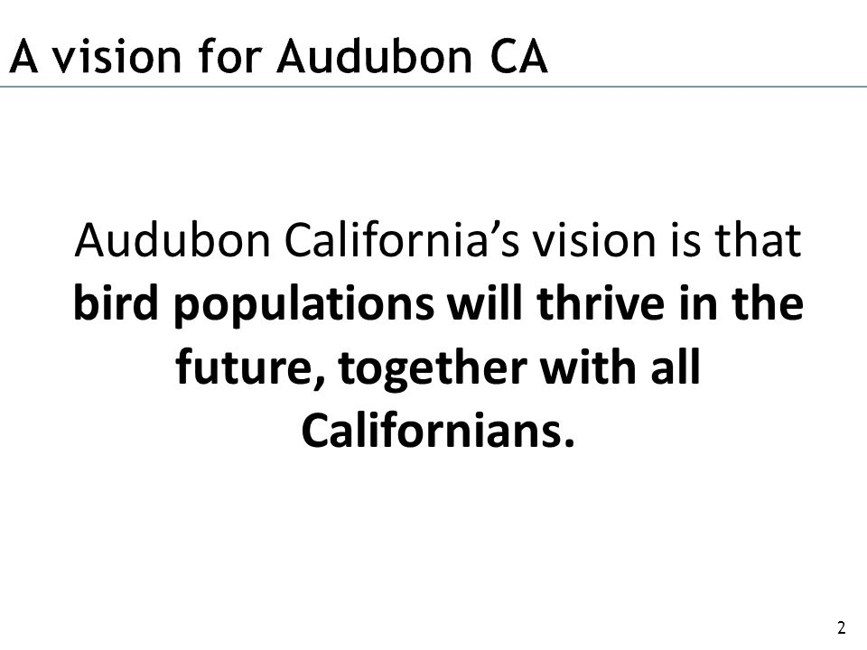 Support and manage conservation partnerships between chapters and Audubon CA.