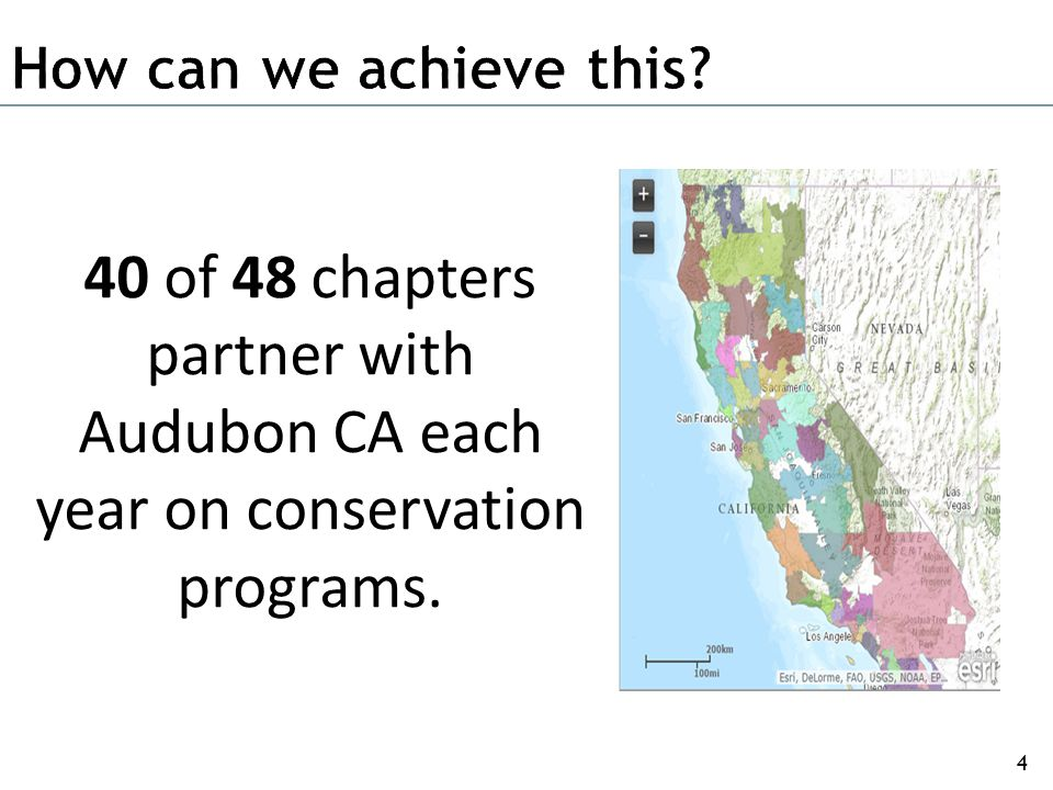 We build and strengthen the Audubon California chapter network. 4 40 of 48 chapters partner with Audubon CA each year on conservation programs.