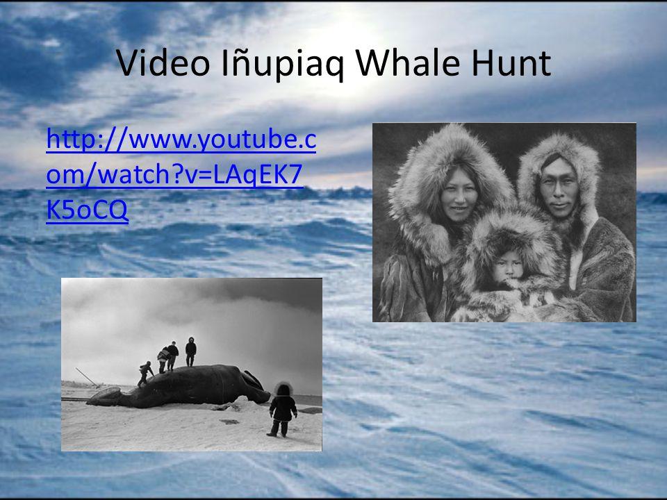 Video Iñupiaq Whale Hunt http://www.youtube.c om/watch v=LAqEK7 K5oCQ