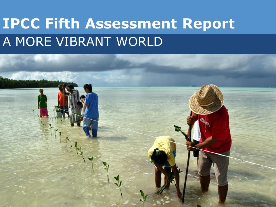 IPCC Fifth Assessment Report A MORE VIBRANT WORLD