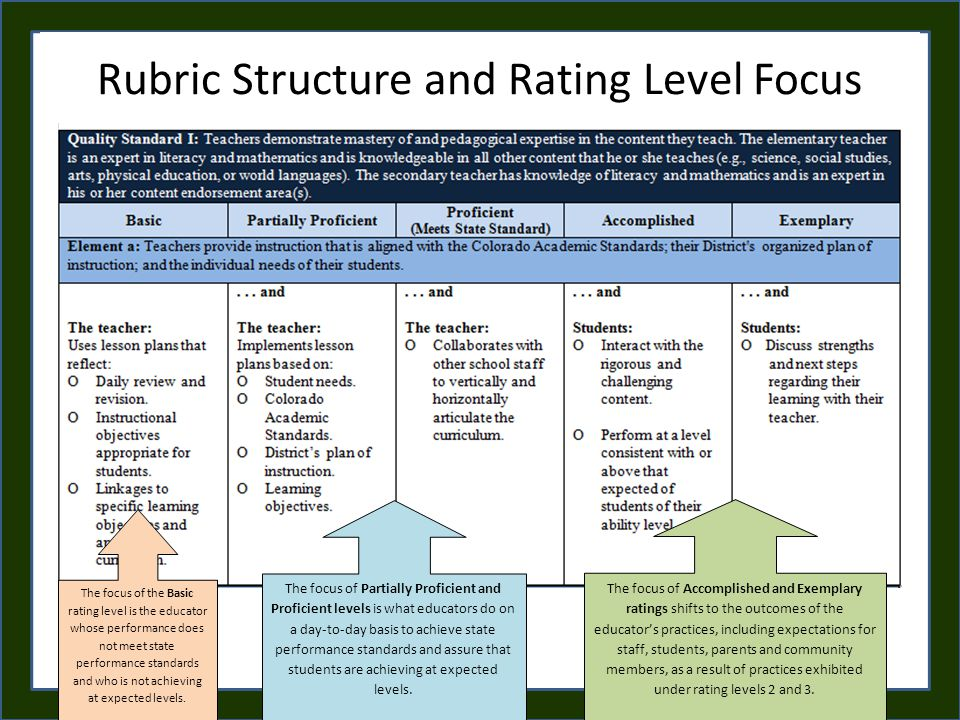 Rubric Structure and Rating Level Focus The focus of the Basic rating level is the educator whose performance does not meet state performance standards and who is not achieving at expected levels.