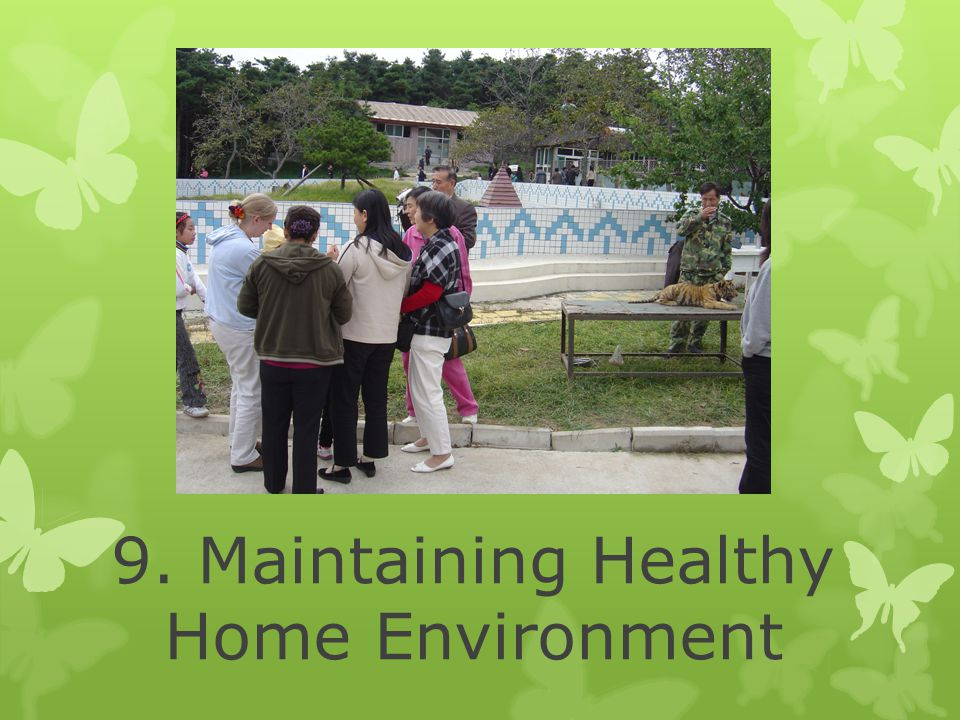 9. Maintaining Healthy Home Environment
